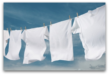 Tinea Versicolor Sanitized Laundry